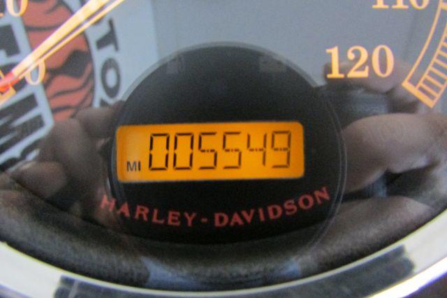 2016 Harley-Davidson Softail® Fat Boy® Lo Arlington, Texas 23