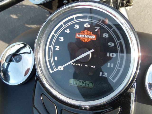 2016 Harley-Davidson Softail® Slim® Ephrata, PA 13