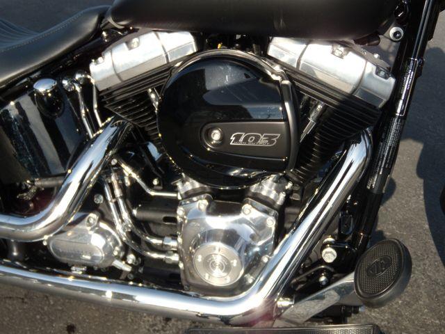 2016 Harley-Davidson Softail® Slim® Ephrata, PA 9