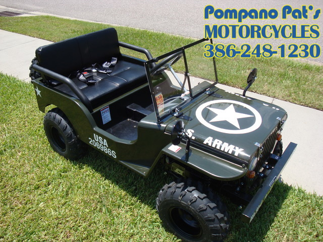 2016 Zhejiang Mini Jeep Daytona Beach, FL 0