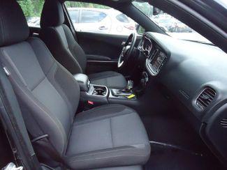 2017 Dodge Charger SXT SEFFNER, Florida 14