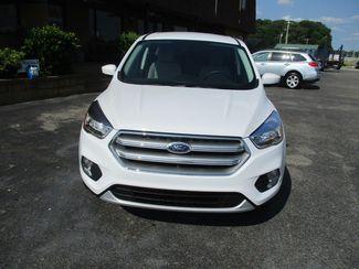 2017 Ford Escape SE  city Tennessee  Peck Daniel Auto Sales  in Memphis, Tennessee