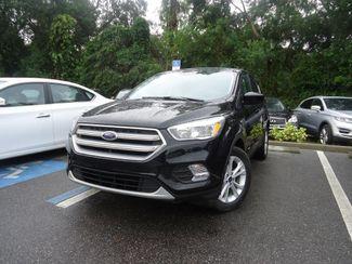 2017 Ford Escape SE SEFFNER, Florida
