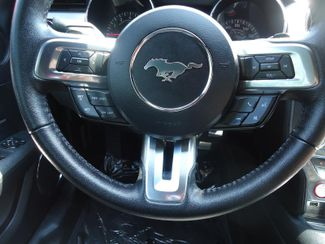 2017 Ford Mustang EcoBoost Premium SEFFNER, Florida 7