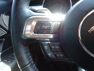 2017 Ford Mustang EcoBoost Premium SEFFNER, Florida 8