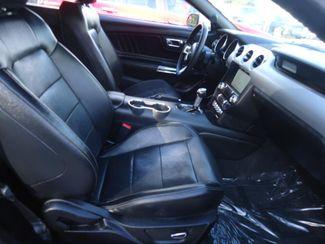 2017 Ford Mustang EcoBoost Premium SEFFNER, Florida 24