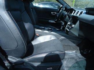 2017 Ford Mustang EcoBoost Premium CONVERTIBLE SEFFNER, Florida 18
