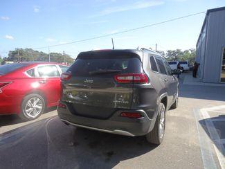 2017 Jeep Cherokee Limited SEFFNER, Florida 10