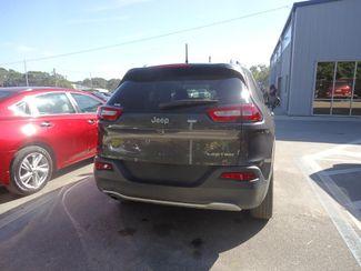 2017 Jeep Cherokee Limited SEFFNER, Florida 11