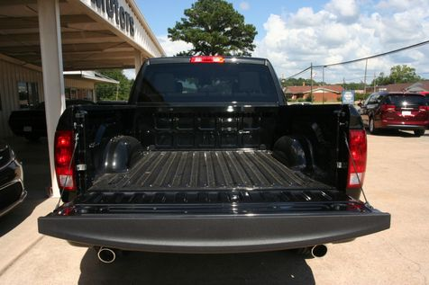 2017 Ram 1500 Express in Vernon, Alabama