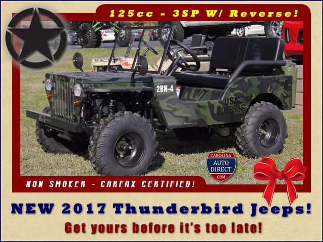 2017 Thunderbird Jeep - NEW - Great gift... just in time for Christmas! Mooresville , NC 0