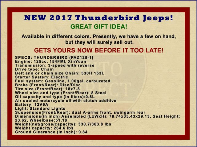 2017 Thunderbird Jeep - NEW - Great gift... just in time for Christmas! Mooresville , NC 1