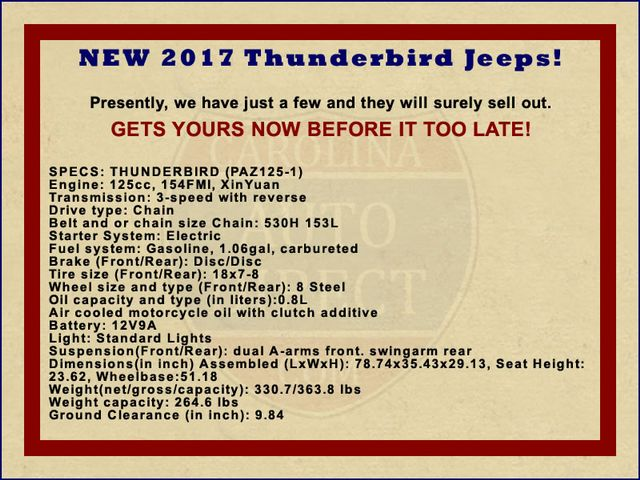 2017 Thunderbird Jeep - NEW - LIMITED QUANTITY - LOTS OF FUN! Mooresville , NC 1